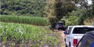 Asesinan a hijo de dirigente del PT en Morelos