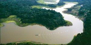 Investigarán sobre cambio climático con torre en el Amazonas