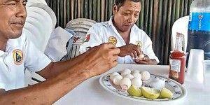 Despiden a funcionarios por comer huevos de tortuga