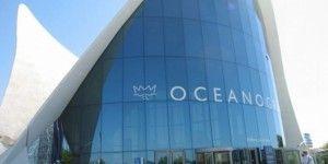 Socio de Oceanografía obtiene libertad bajo fianza en EE.UU.