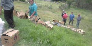 Roban cerveza de camión accidentado en Edomex